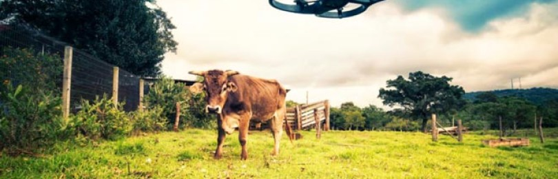 10 мировых сельскохозяйственных cтартапов