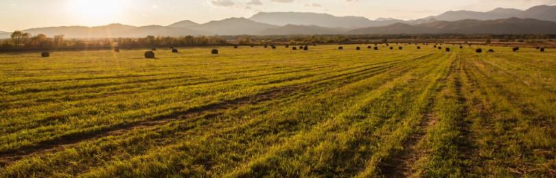 Как оценивать земельные участки для инвестиций?