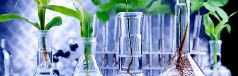 Обзор непростых стартапов в сфере биотехнологий