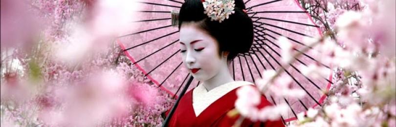 Древнейшие традиции и новейшие технологии: японские ноу-хау