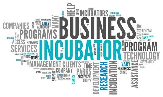 Планы бизнеса инкубатора бизнес план парикмахерской мини