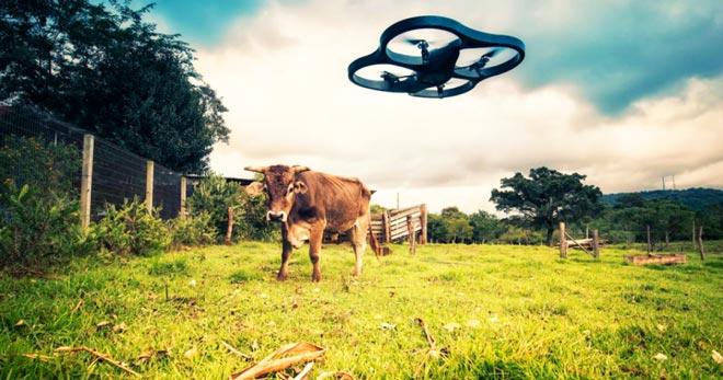 Технологии в сельском хозяйстве