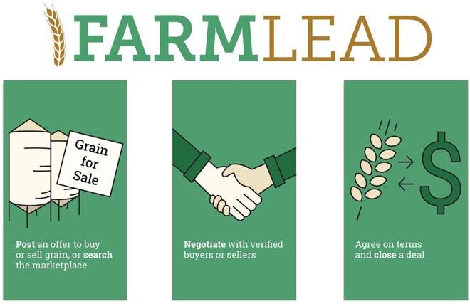 Рынок зерна Farmlead