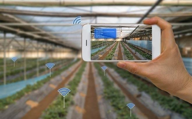 Инновации в агробизнесе