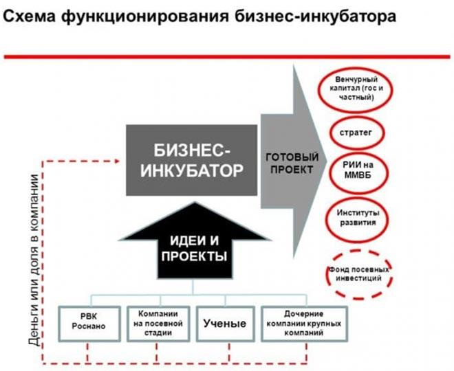 Схема бизнес-инкубатора