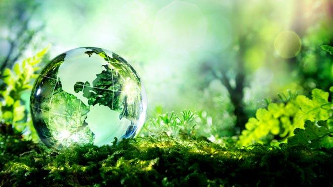 Global Innovation Index Белоруссии