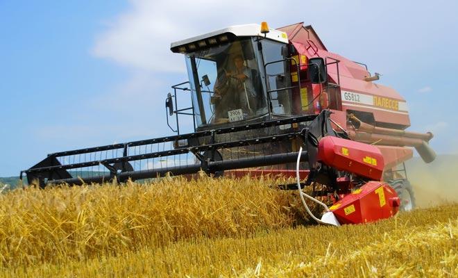 аграрная Белоруссия