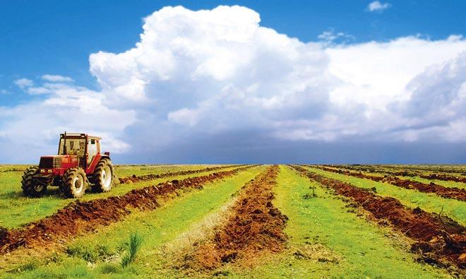 Развитие сельских территорий Казахстана