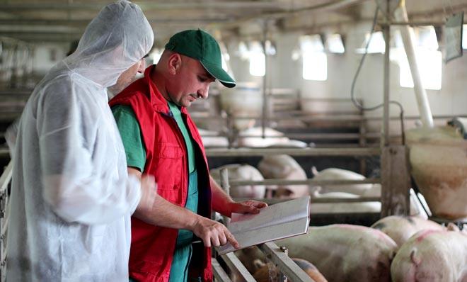 инновационные технологии сельскохозяйственной ветеренарии