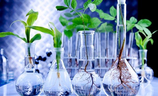 стартапы в биотехнологиях