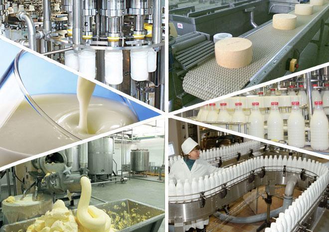 Пищевое производство выгодно в рф